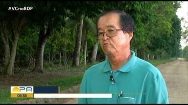 Imigrantes japoneses criam modelo de agricultura sustentável no interior do Pará - Imigrantes japoneses criam modelo de agricultura sustentável no interior do Pará
