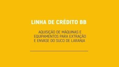 Família expande negócio com linha de crédito especial do Banco do Brasil - Linha de crédito diferencial permitiu a compra de máquinas e equipamentos para a extração e envase de suco de laranja.