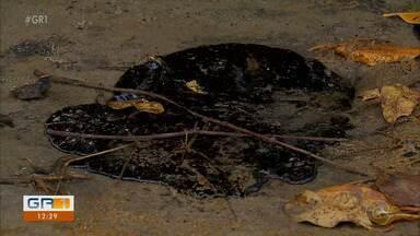 Manchas de óleo são encontradas também na praia dos Carneiros em Pernambuco - Praia é uma das mais bonitas do Brasil.