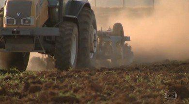 Plantio da soja está atrasado em Mato Grosso do Sul e Goiás - Chuvas não estão sendo satisfatórias para garantir o plantio e alguns agricultores começam a plantar mesmo sem a umidade ideal do solo.