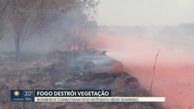 Bombeiros combatem dois incêndios em áreas florestais do DF neste domingo (20) - Um dos incêndios queimou parte da Floresta Nacional e da APA do Descoberto.