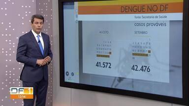 DF registra 44.828 casos de dengue este ano - De acordo com boletim da secretaria de Saúde, 47 pessoas morreram vítimas da doença.