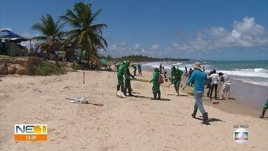 Rastros de óleo são achados em praias do Cabo de Santo Agostinho - Voluntários atuaram na limpeza.