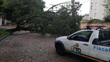 Mais de cinco mil pessoas são afetadas por temporal em todo o RS nesta terça-feira - Chuva forte e ventania provocou estragos em residências, queda de postes e árvores.
