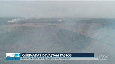Mesmo com proibições, queimadas destroem fazendas e dão prejuízos a agricultores no MA - Desde o fim de agosto há um decreto estadual que proíbe o uso de fogo na limpeza dos campos.