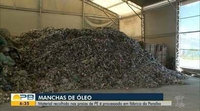 Manchas de Óleo; material recolhido nas praias de PE é processado em fábrica da Paraíba - Corais de Picãozinho, na Praia de Tambaú, foram monitorados nesta quinta-feira.