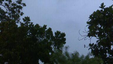 Veja como fica a previsão do tempo para esta sexta-feira (1º) no Acre, segundo o Sipam - Veja como fica a previsão do tempo para esta sexta-feira (1º) no Acre, segundo o Sipam