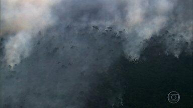 Número de queimadas na Amazônia é o menor em um mês de outubro desde 1998 - No mês passado, as imagens de satélite identificaram 7.855 focos em toda a Amazônia, segundo o Instituto Nacional de Pesquisas Espaciais (Inpe).