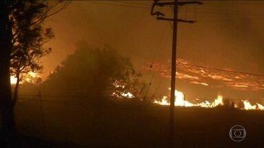 Donald Trump ameaça cortar verba de combate a incêndios na Califórnia - Presidente americano culpa má administração estadual das florestas por incêndios. Meteorologistas associam ao aquecimento global.