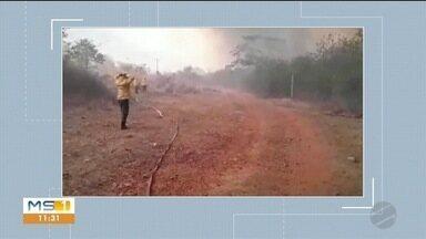 Incêndios continuam destruindo a vegetação no Pantanal - Além das perdas ambientais, fogo deixou Corumbá sem internet na tarde do último sábado