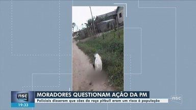 Moradores quesitonam ação da polícia em que cães da raça pitbull foram feridos a tiros - Moradores quesitonam ação da polícia em que cães da raça pitbull foram feridos a tiros