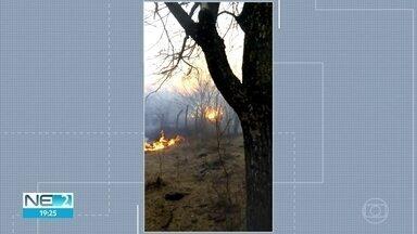 Incêndio atinge Zona Rural de Floresta e já dura dois dias - Bombeiros trabalham no combate às chamas.