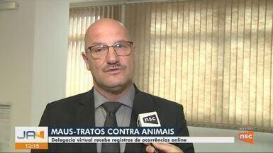 Delegacia virtual recebe denúncias de maus-tratos contra animais em SC - Delegacia virtual recebe denúncias de maus-tratos contra animais em SC