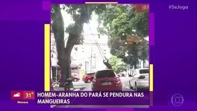 Homem Aranha do Pará se pendura em mangueiras - Colombiano chama atenção dos motoristas se pendurando nas árvores das ruas
