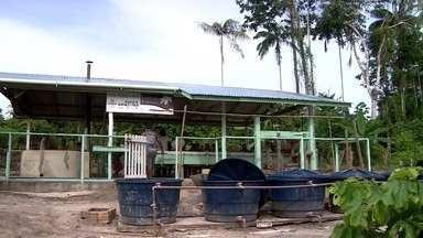 Mamirauá recebe projetos que melhoram a qualidade de vida da população local - Reserva de Desenvolvimento Sustentável recebeu água encanada para moradores e placas fotovoltaicas para captação de energia solar.