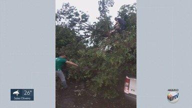 Moradores calculam prejuízos um dia após temporal em Igarapava, SP - Vento forte destelhou casas, escolas, e derrubou árvores na quarta-feira (6). Segundo a Somar Meteorologia, foram registrados 40 milímetros de chuva em uma hora.