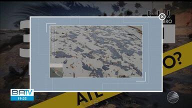 Manchas de óleo: fragmentos voltam a ser vistos na Praia do Forte e Porto de Sauípe - Morador enviou vídeo mostrando estado da praia de Tubarões, na ilha de Boipeba.