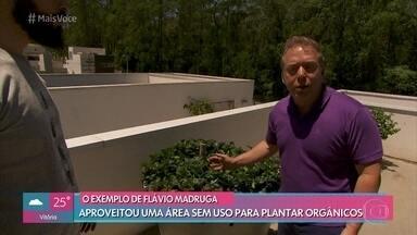 Nutrólogo fez plantação de orgânicos em casa para consumo próprio - Flávio Madruga teve a ideia transformar uma área sem uso para plantar frutas, verduras e hortaliças e melhorar os hábitos alimentares da família