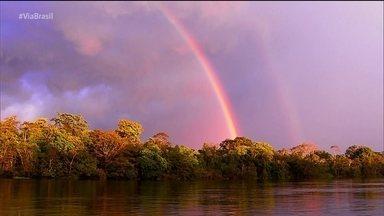 As belezas da Amazônia