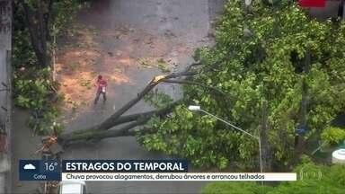 Chuva deixa mais de 500 apartamentos sem luz no Jaguaré - Em Cotia, uma creche ficou alagada. Na capital, quase 200 árvores caíram.