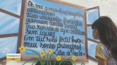 Escola transforma muro em espaço de pintura e poesia, no Acre - Projeto poesia nos muros tem inspirado alunos.