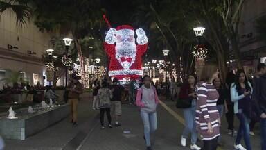 Compras e decoração de Natal mudam o ritmo de São Paulo - O mês de dezembro vai começar e a cidade de São Paulo vai começar o mês das festas com um clima natalino em todo o canto. A árvore de Natal do Ibirapuera será inaugurada neste sábado (30).