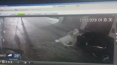 Imagens mostram furto a loja em Varginha, MG - Imagens mostram furto a loja em Varginha, MG