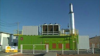 Usina de biogás começa a funcionar em Petrolina - Essa é a primeira usina do tipo no interior do estado.