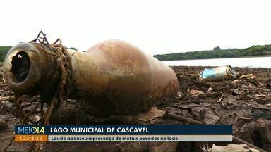Baixa do Lago Municipal de Cascavel mostra lixo jogado por moradores - Novo processo de desassoreamento é discutido pela Sanepar e prefeitura. Laudo que mostra a situação do lodo do Lago apontou a presença de metais pesados.
