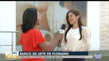 Banco de leite de Floriano volta a funcionar depois de seis anos - Banco de leite de Floriano volta a funcionar depois de seis anos