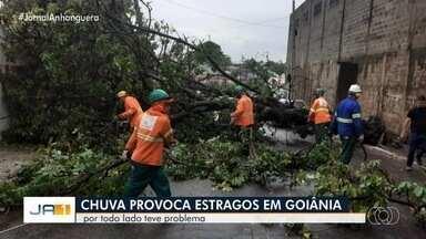 Pontos de Goiânia registram enxurrada e alagamentos devido à forte chuva - Comurg registrou queda de pelo menos oito árvores.