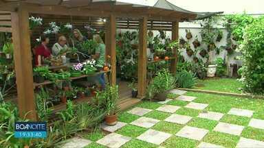 Guarapuava tem colecionadores de orquídeas - Tem gente que perdeu as contas de quantas espécies estão espalhadas pelo quintal de casa.