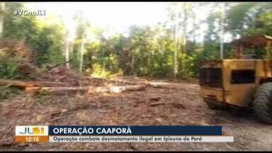 Operação combate desmatamento ilegal em Ipixuna do Pará - Operação combate desmatamento ilegal em Ipixuna do Pará