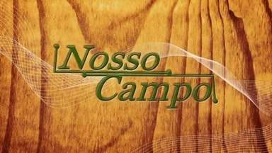 Confira o 3º bloco do Nosso Campo deste domingo (12) - Confira o 3º bloco do Nosso Campo deste domingo (12).