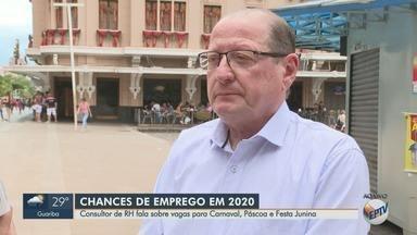 Consultor de recursos humanos explica como se candidatar a vagas temporárias de emprego - Há várias oportunidades na região de Ribeirão Preto (SP).