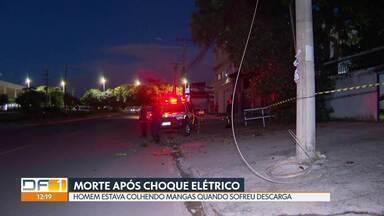 Homem morre depois de choque elétrico em Taguatinga - Segundo o Corpo de Bombeiros, José de Assis Filho, 66 anos, colhia manga quando sofreu uma descarga. Ele usava uma vara de metal para colher a fruta.