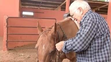 Morre pecuarista José Macário, um dos fundadores da ABQM - O pecuarista José Macário Perez Pria, 78 anos, um dos fundadores da Associação Brasileira de Criadores de Cavalo Quarto de Milha (ABQM), morreu na madrugada desta terça-feira (7).