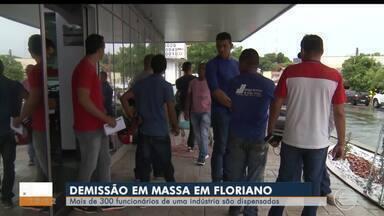 Mais de 300 funcionários de uma indústria são demitidos em Floriano - Mais de 300 funcionários de uma indústria são demitidos em Floriano