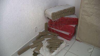 PM prende casal suspeito de tráfico e apreende 150 kg de maconha em Campinas - Casal foi preso em sobrado no Centro, após ser denunciado pelo irmão do homem, que é usuário e foi abordado em Hortolândia (SP). Caso aconteceu na noite de terça-feira (14).