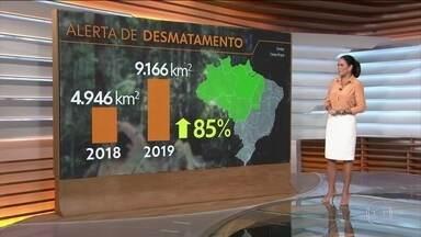 Alertas de desmatamento crescem 85% em 2019, aponta Inpe - Os estados onde o desmatamento mais cresceu foram Pará, Mato Grosso e Amazonas. Dados são do sistema DETER, do Instituto Nacional de Pesquisas Espaciais, o Inpe.
