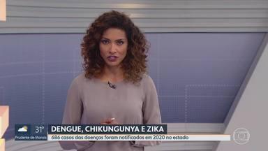 Dengue e outras doenças do Aedes Aegypti preocupam em Minas - Quase 700 casos já foram registrados em 2020.