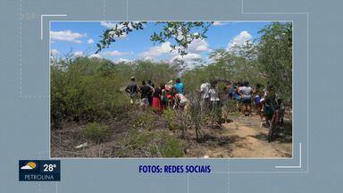 Polícia investiga assassinato de menino encontrado em matagal no Vale Dourado - De acordo com o delegado de Polícia Civil, Magno Neves, a vítima é um menino de aparentemente dois anos de idade, mas que ainda não foi identificado.