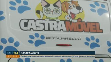 Ônibus do projeto Castramóvel deve começar a funcionar em fevereiro de 2020 em Cascavel - A ideia é reduzir o número de animais de rua na cidade, mas ONGs alertam para a falta de estrutura para atender na recuperação dos bichos