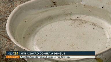 Combate a dengue mobiliza agentes em várias regiões do Foz do Iguaçu - A cidade entrou em alerta com o aumento dos focos do mosquito transmissor da dengue.
