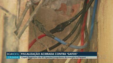 Copel identifica 43 ligações de energia irregulares por dia no Paraná - Conhecidas como 'gatos' as ligações irregulares representam risco para segurança, além de ser crime.