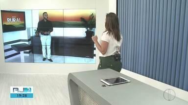 Inter TV Rural traz as últimas notícias do setor rural neste domingo - Jefferson Marques antecipa alguns destaques.