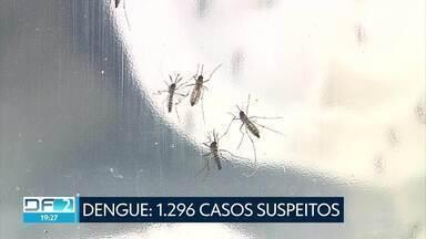 DF inicia o ano com números preocupantes de dengue - Segundo a Secretaria de Saúde, apenas no mês de janeiro, foram registrados 1.296 casos suspeitos de dengue.