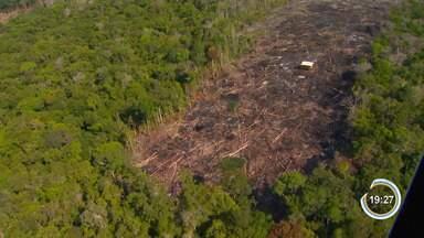 Áreas sob alerta de desmatamento na Amazônia batem recorde em janeiro, aponta Inpe - Sistema do governo federal aponta que permanece tendência de aumento no desmate. Análise do trimestre (novembro, dezembro e janeiro) também indica recorde na série histórica, que começou em 2016.