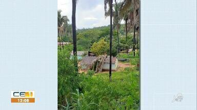 Palmeira cai em cima de uma casa durante chuva em Barbalha - Saiba mais no g1.com.br/ce