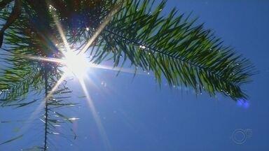 Dermatologista explica a importância de se passar filtro solar todos os dias - Você é da turma que acha que só precisa usar filtro solar na praia ou na piscina? O risco de ter um câncer de pele é mais alto na região noroeste paulista, onde tem calor e sol forte quase que o ano inteiro.